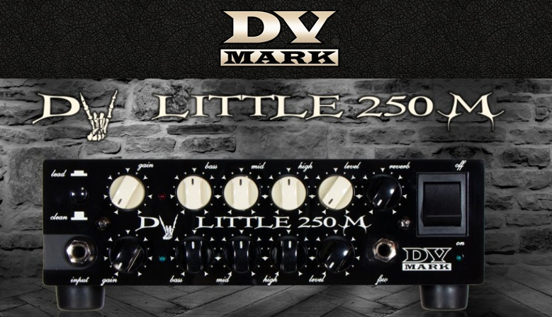 DV Mark Little 250M Amp Head